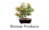 Bonsai Produce & Distribution, Inc.'s picture