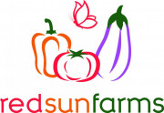 Red Sun Farms's picture